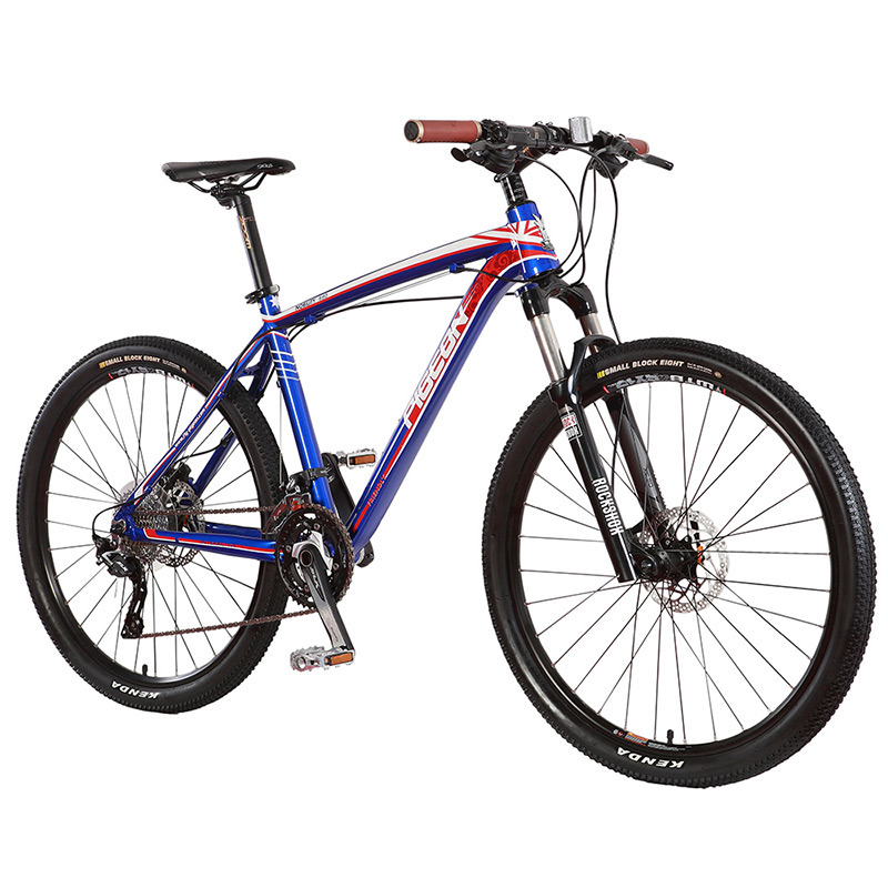 High Grade 30 Speed Mountain Bike Cameron Style MTB (FP-MTB-A03)