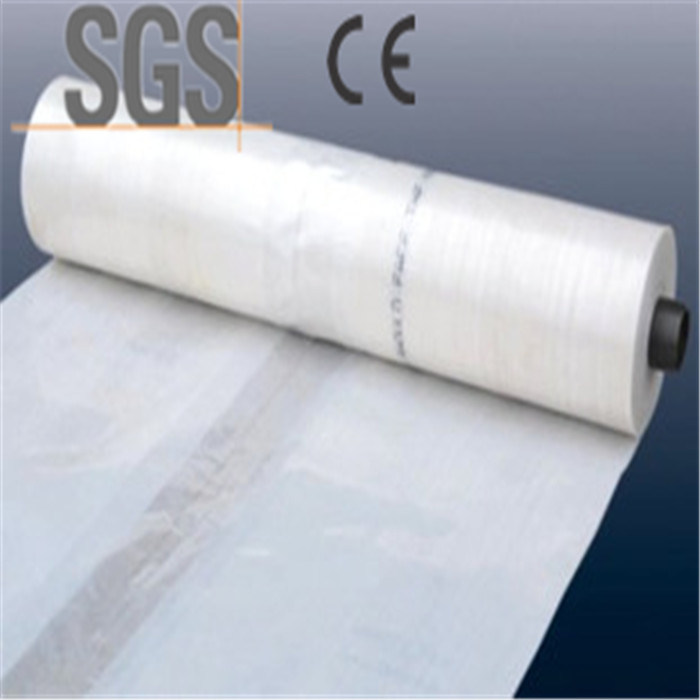 25mic Perforated Plastic Film Agricultural Film/Mulch Film