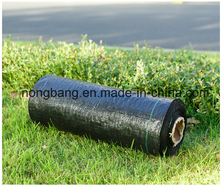 Plastic Ground Cover for Garden