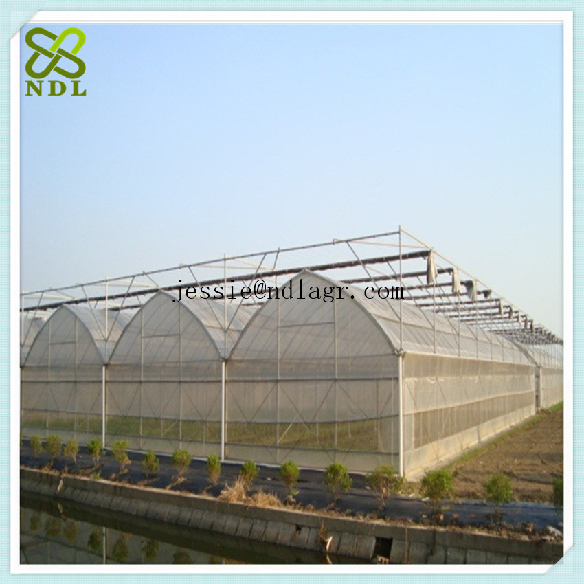 Tropical Solar Hydroponic Film Green House