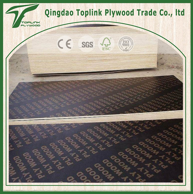 Black/ Brown Color Poplar Film Faced Shuttering Plywood for Construction