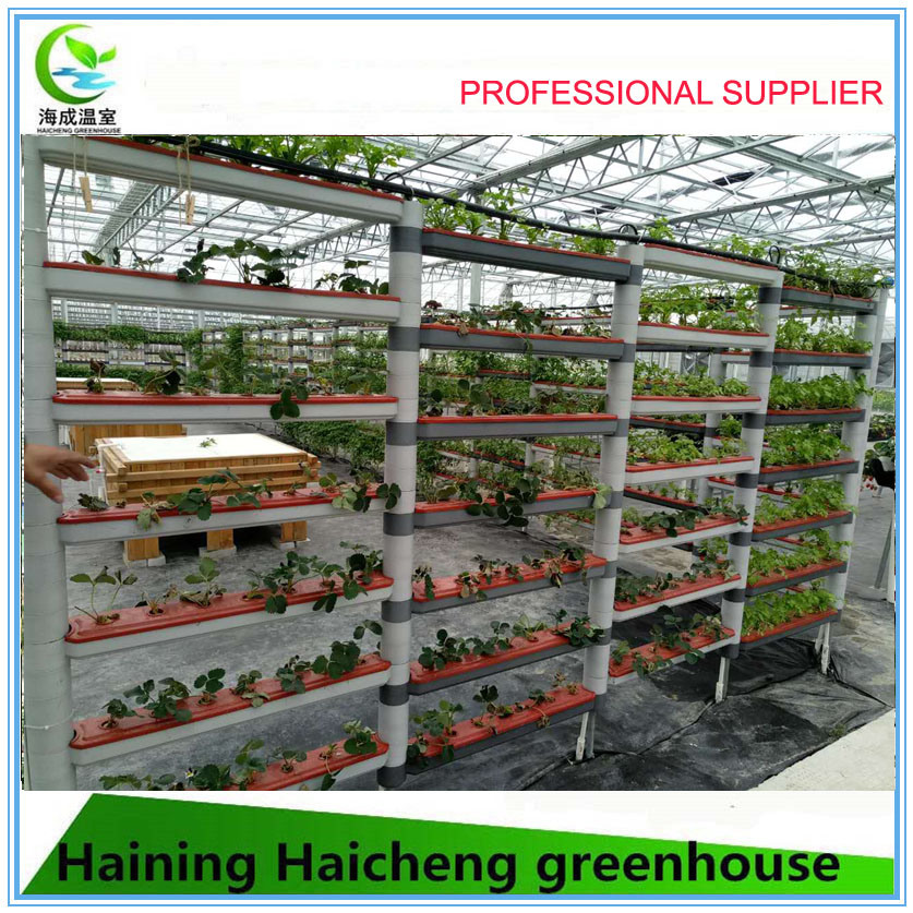 Vegetable Growing Intelligent Glass Greenhouse