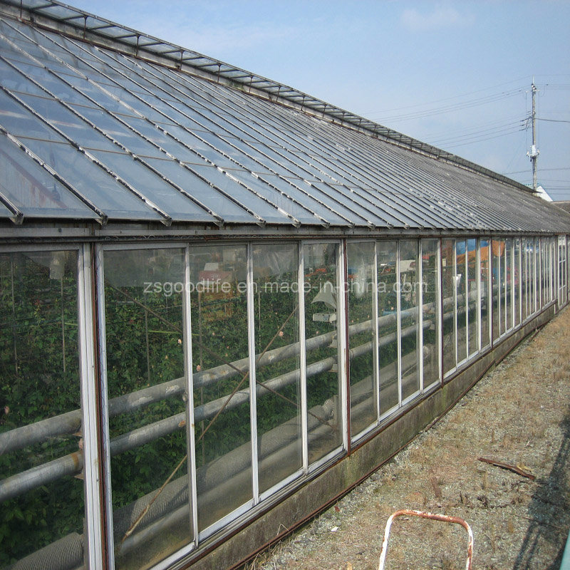 3mm Clear Polycarbonate Solid Sheet for Green House