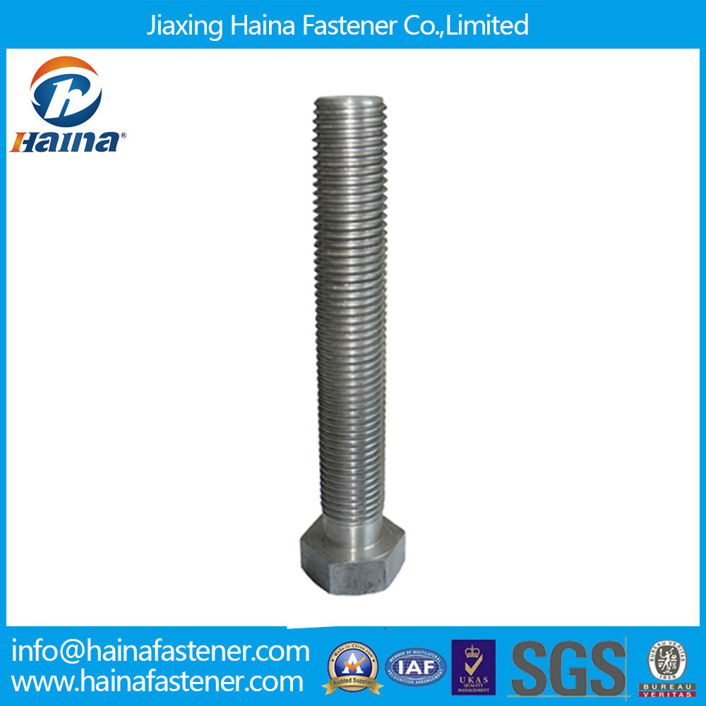 Stainless Steel Hex Head Bolt (DIN933, DIN931)