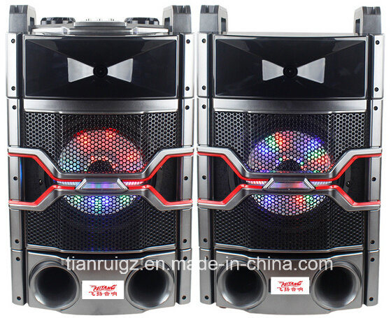10inch Professional Audio System with LED Light 200W E244
