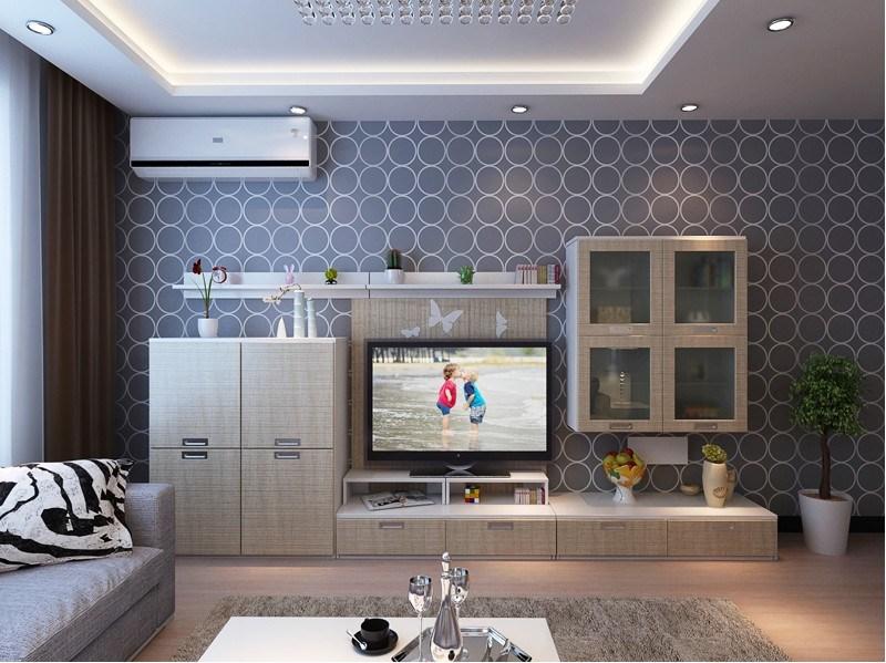 New Style Living Room Furniture Elegant Lounge Furniture (zk-008)