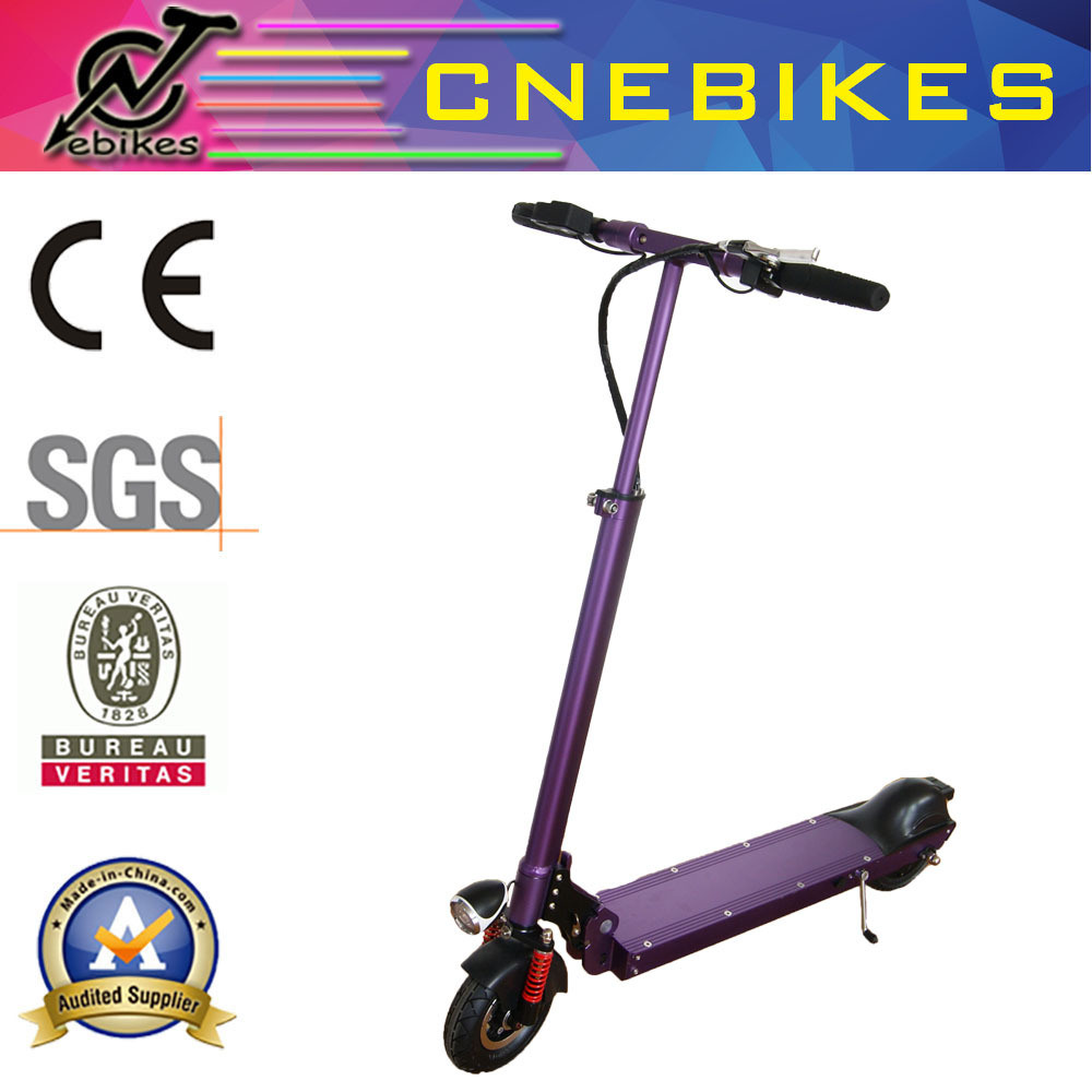 10 Inch High Power 250W Electric Scooter with Hub Motor