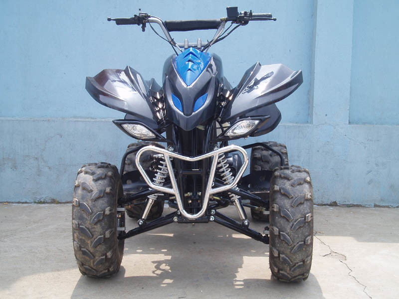 china raptor atv 250cc china atv all terrain vehcil. Black Bedroom Furniture Sets. Home Design Ideas