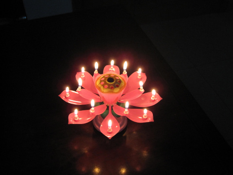 Chinese Lotus Candle Images Reverse Search
