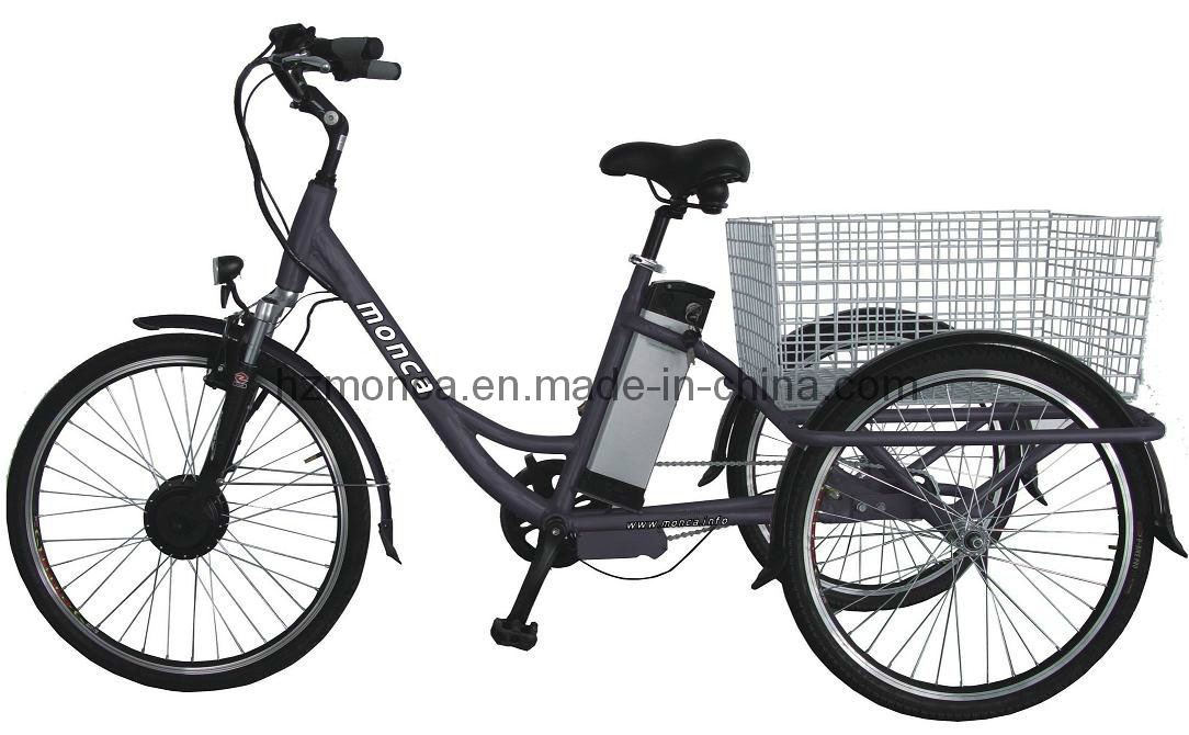 China Made Good Quality E Trike Electric Tricycle E-Bike Simple E-Tricycle EU Popular Type