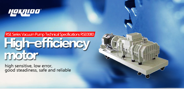 LCD Module Used Good Quality Dry Screw Vacuum Pump (RSE0080)