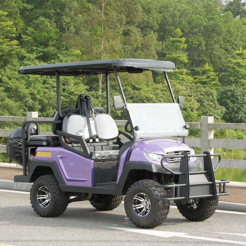 4 Wheels Golf Product Electric Golf Cart with Rear Seat