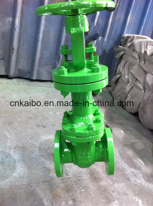 Low Temperature Cryogenic Gate Valve