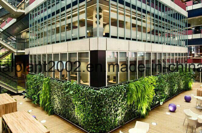 Artificial Grass Plants Wall for Covering Decoration