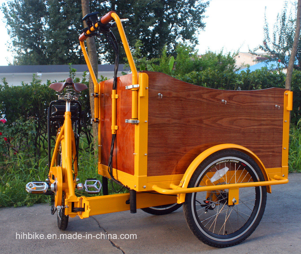 Foldable Electric Cargo Bicycle with Ce