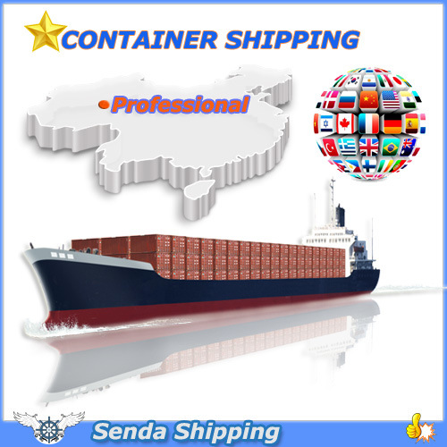 Dry Container Shipping Service to Global