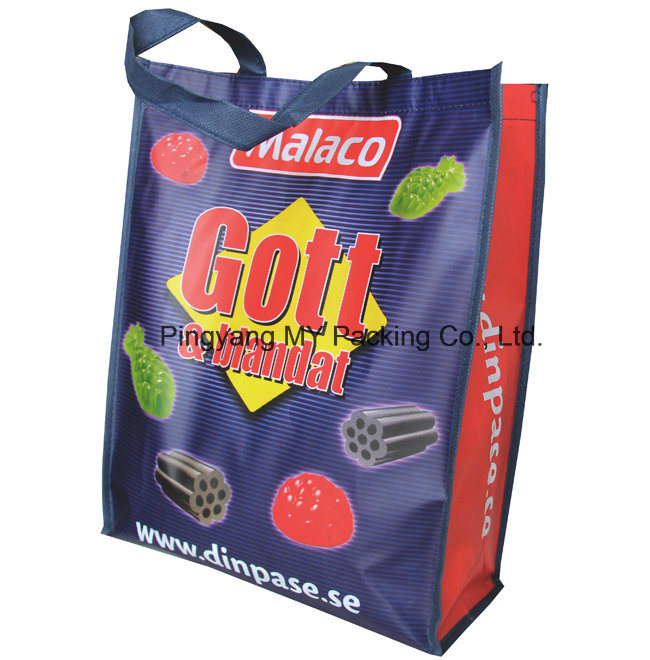 Custom Print BOPP Lamination Non Woven Promotion Bag
