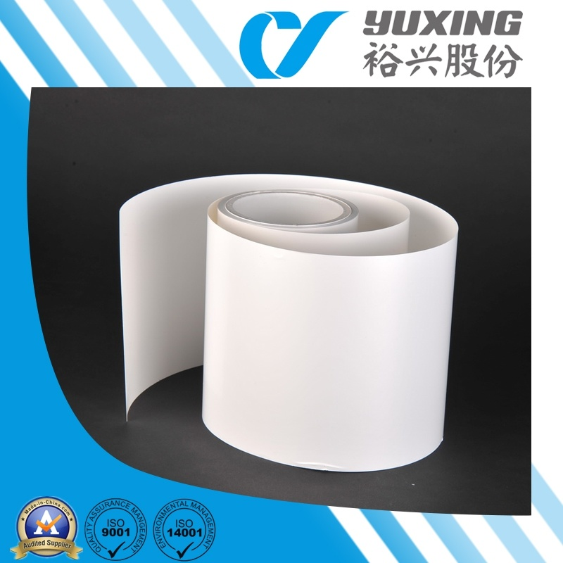 Opaque White Film for Solar Cell Backsheets (CY11G48)