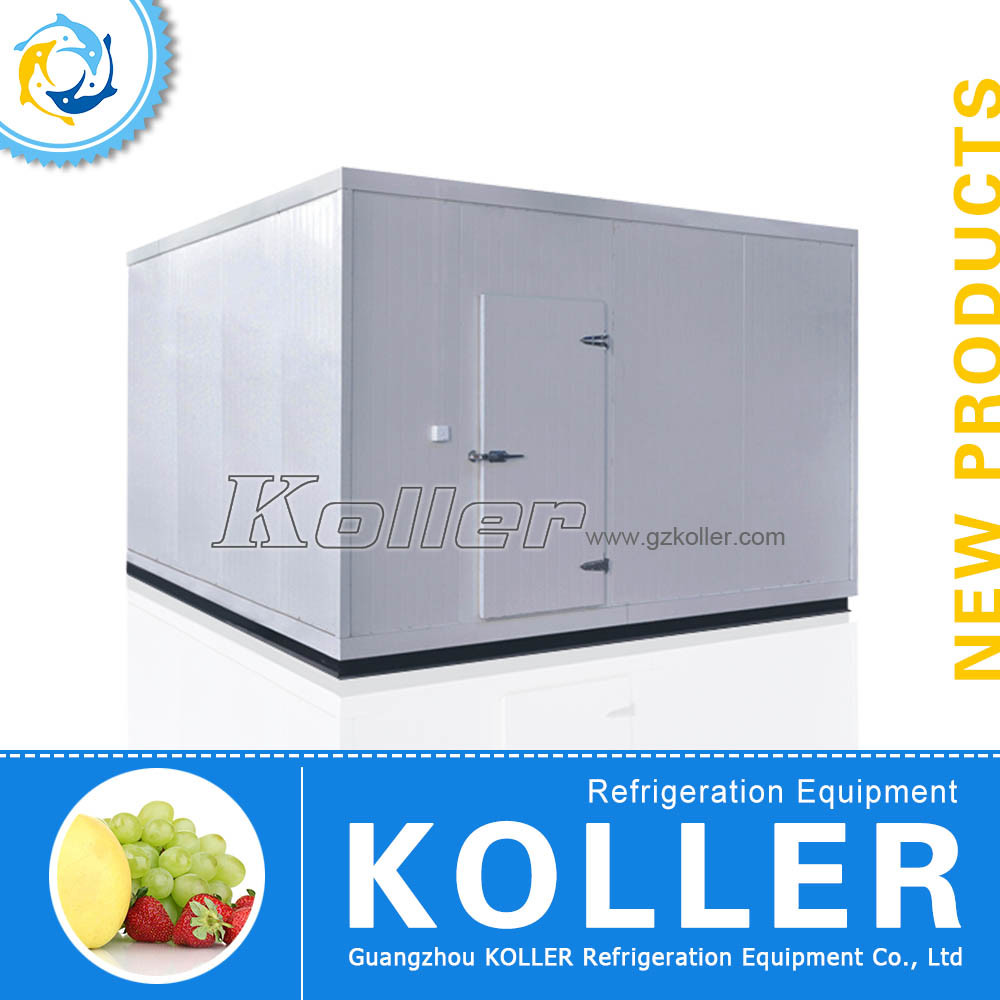 60 Square Cold Room Walking in Freezer