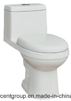 One Piece Toilet Siphonic Toilet Water Closet Wc 8848