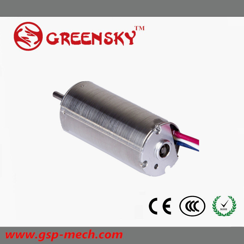 Micro 3.7V 6V 12V 24V High Speed Rpm DC Coreless Gear Motor