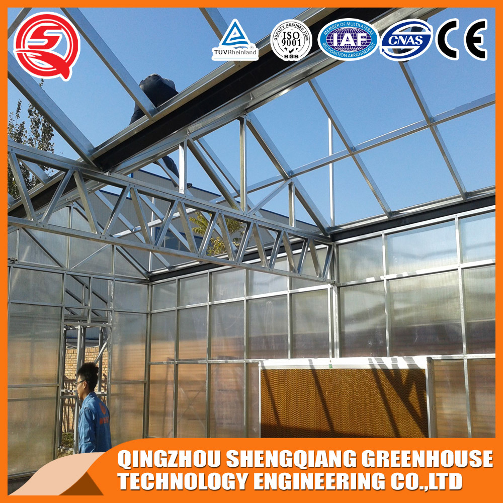 Agriculture Polycarbonate Sheet Greenhouse for Vegetables/Garden
