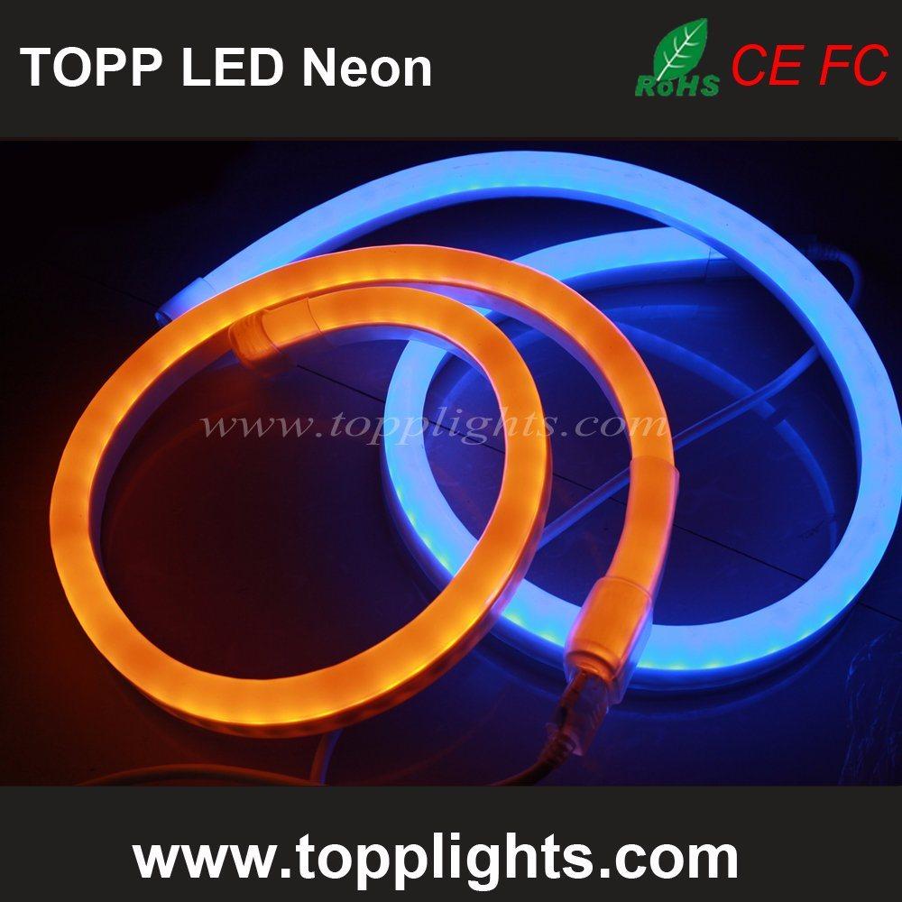 Underwater IP67 Rating LED Neon Flex Professional