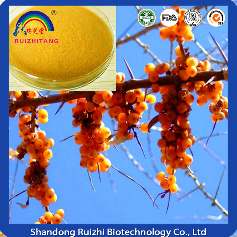 Hot Sale Instant Seabuckthorn Juice Powder