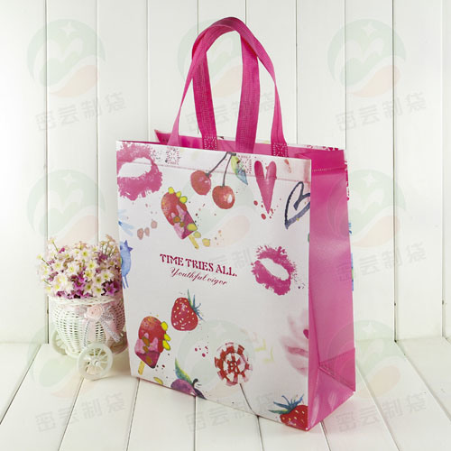 3D Auto-Forming Laminated Recycable Non Woven Bag (My-010)