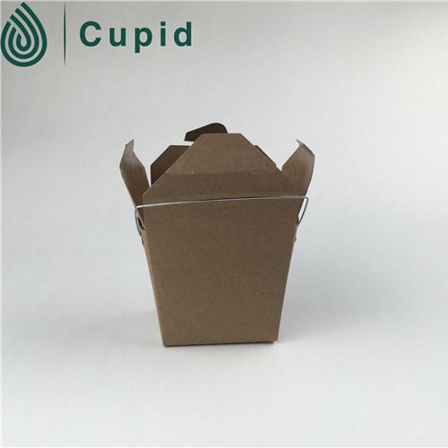 China Wholesale Market Food Grade Disposable Green Pasta Box