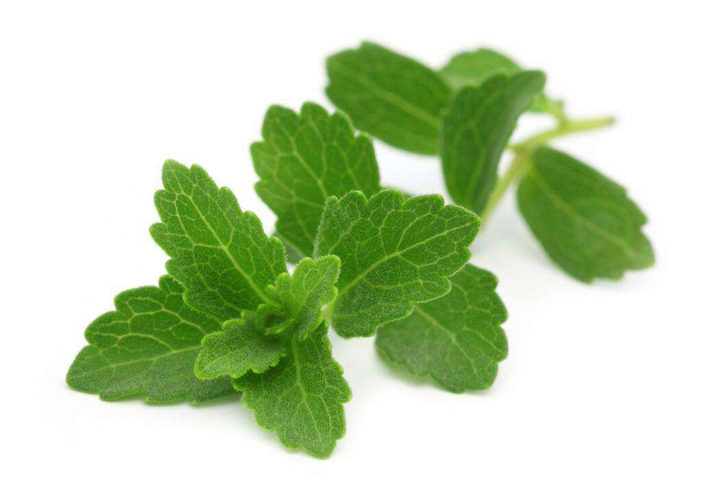 Stevia Compound Sweetener for Foods and Supplement