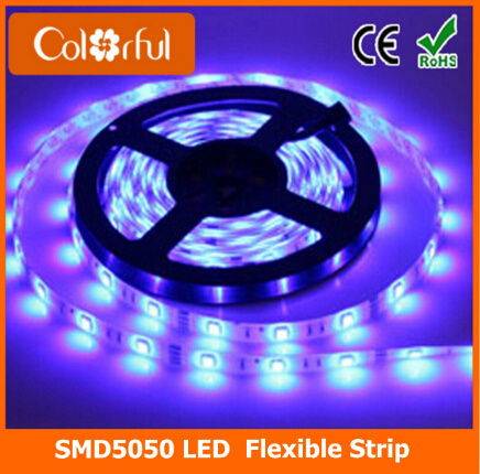 Ce RoHS High Brightness Waterproof SMD5050 DC12V LED Strip