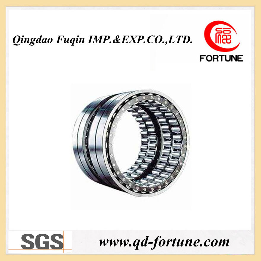 Long Riveted Cylindrical Roller Bearing