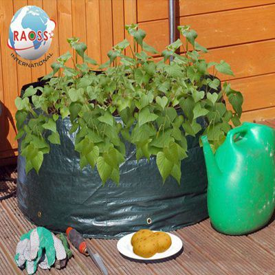PE Material Growing Plant Bags for Your Garden