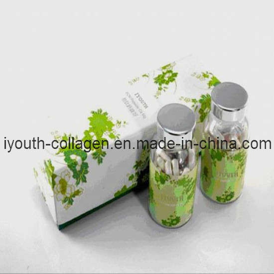 GMP, Top Collagen, 100% Natural Collagen, Taiwan Golden Milkfish Collagen Peptide Calcium Magnesium Capsules 2, Health Food