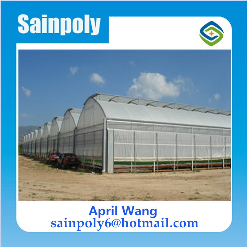 High Quality Wholesale Plastic-Film Multi-Span Greenhouse for Hydroponic