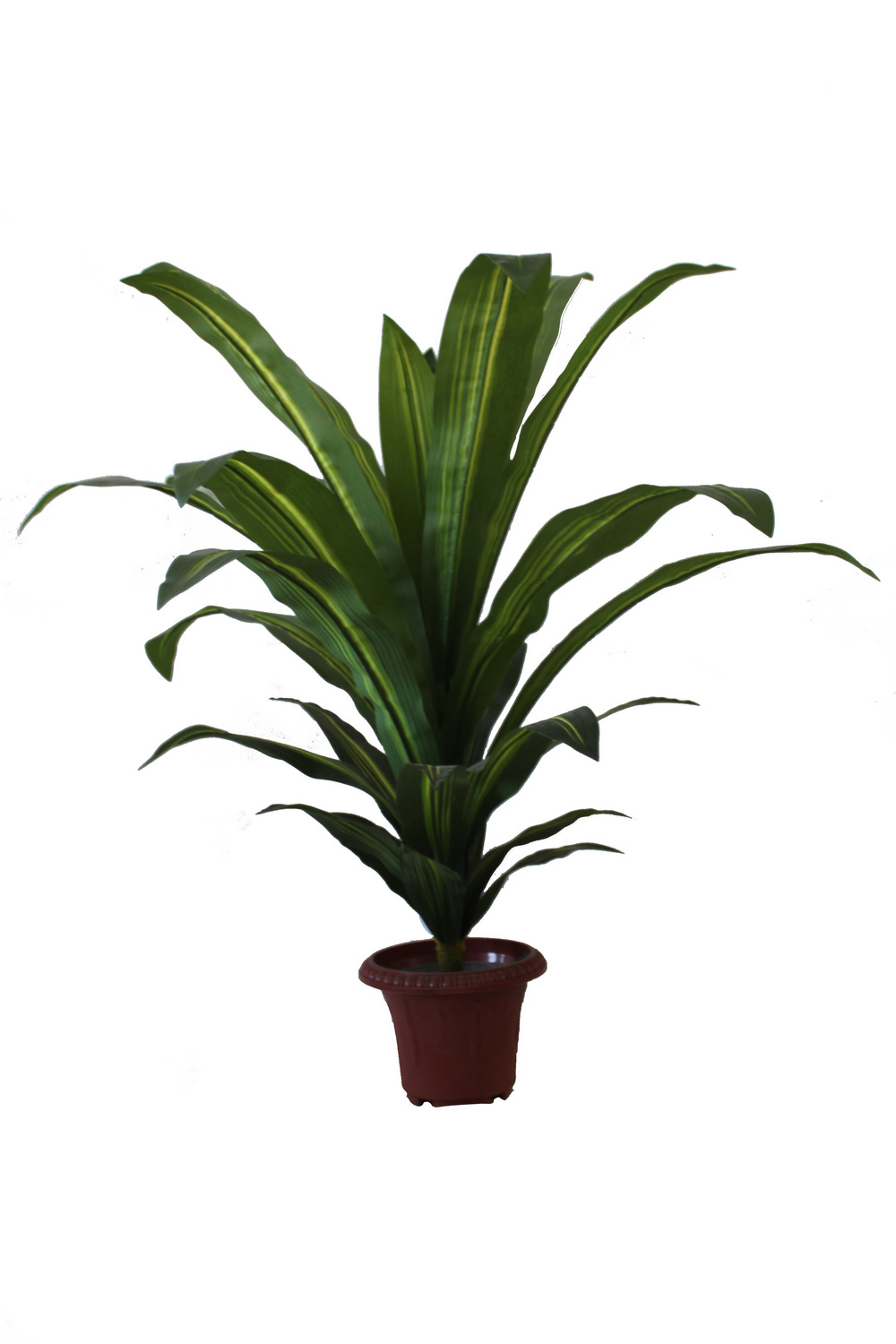 china artificial plant dracaena fragrans bonsia jtla. Black Bedroom Furniture Sets. Home Design Ideas