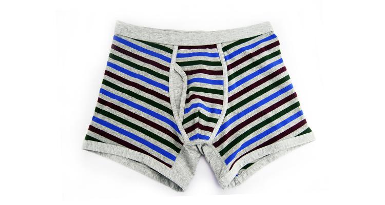 95%Cotton/5%Pendex Men Underwear Boxers Brief Fashion for 255