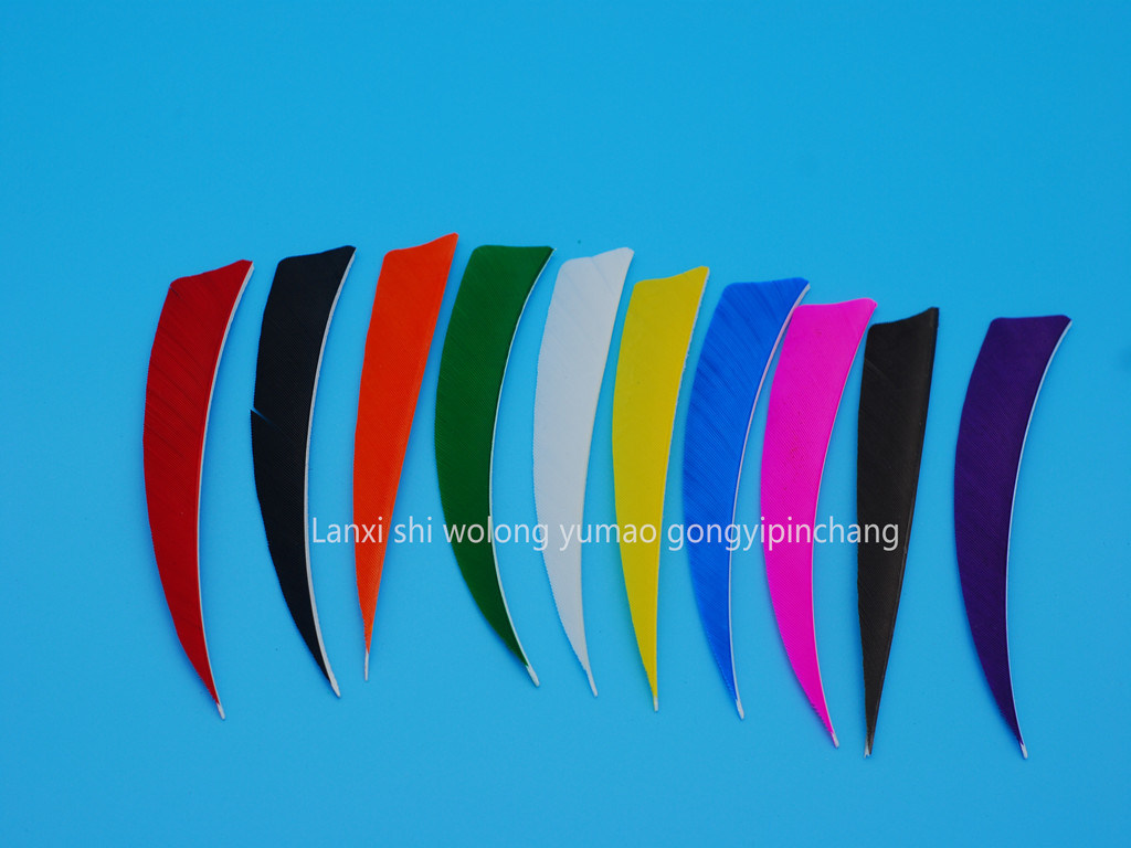 4 Inch Shield Left Wing Arrow Feather