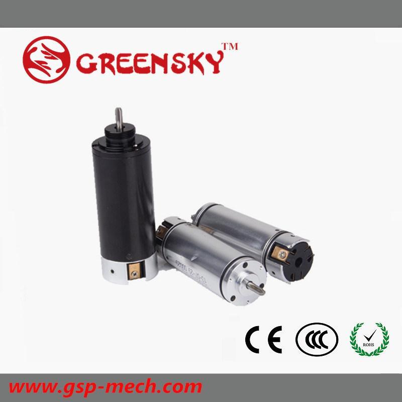 Micro 3.7V 6V 12V 24V High Speed Rpm DC Coreless Gear Motor