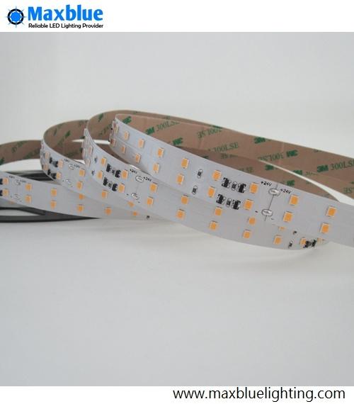 Hot Sale LED Rope Light Series LED Strip Light for Promotion