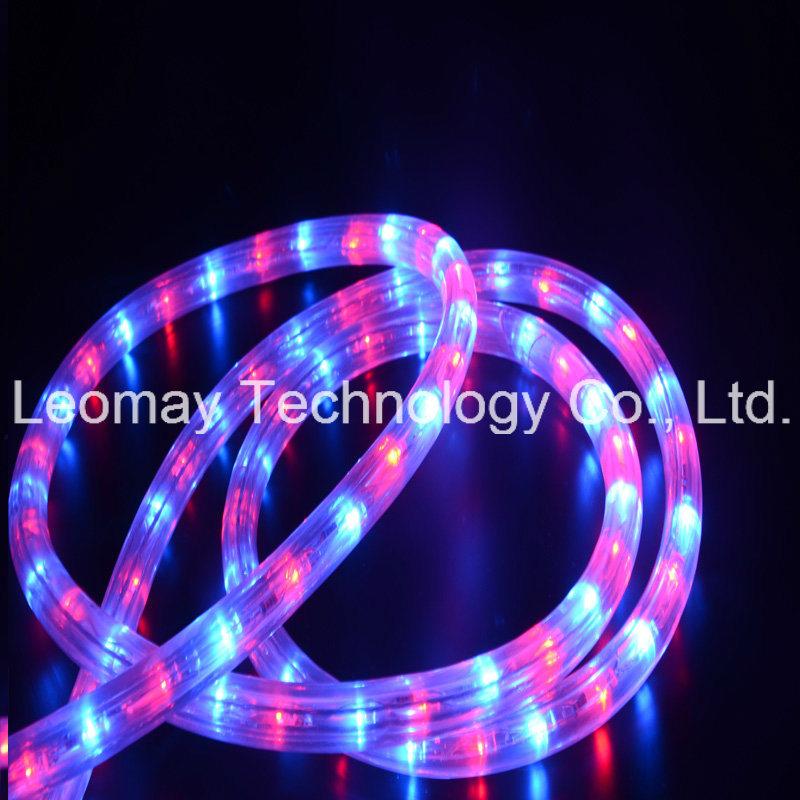 AC230V LED Neon Rope Light Y3 Flex LED Bulb Light