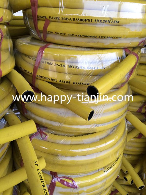 20 Bar High Pressure Compressed Air Hose