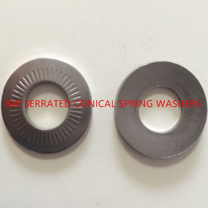 NFE25-511 Serrated Conical Spring Washer
