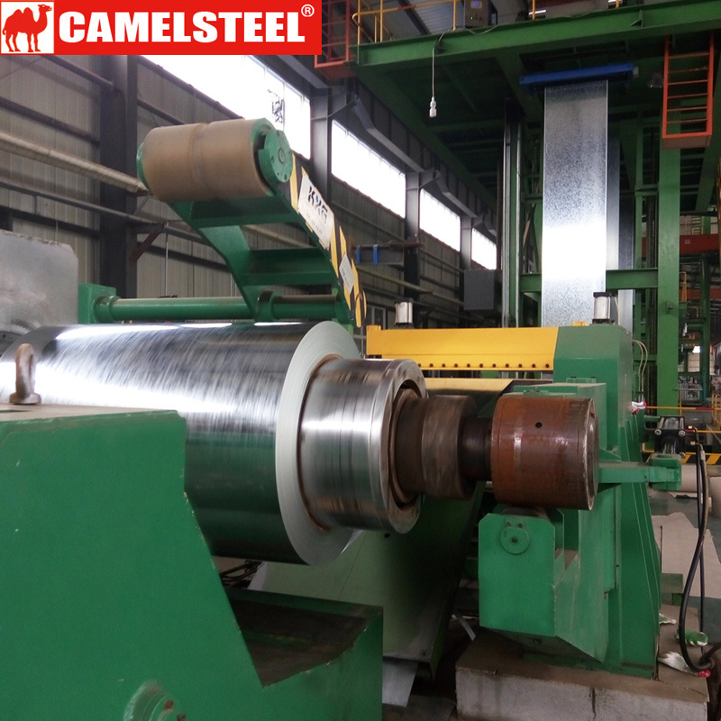 15 Yrs Experience Camelsteel Galvanized Steel Coil
