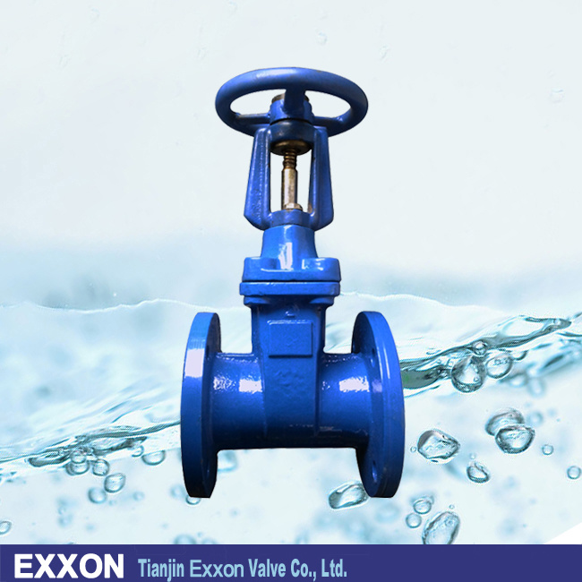 Non-Rising Stem Resilient Seated Gate Valve in Gate Valve