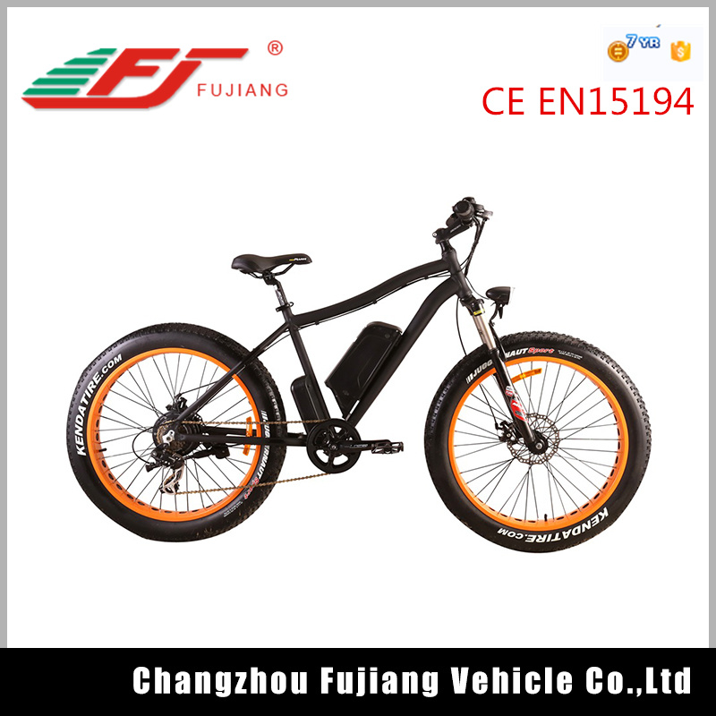 Hot Sale Li-ion Battery E-Bike with En15194