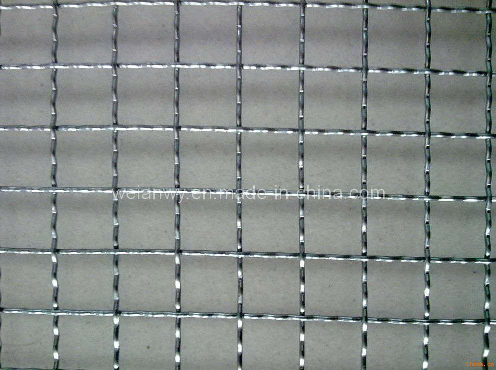 China crimped wire mesh wal