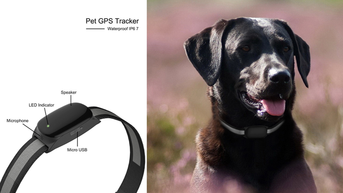 Waterproof IP67 Pet GPS Tracker, Cats Collars Dog GPS Tracker/ Pet Tracker Long Battery Life