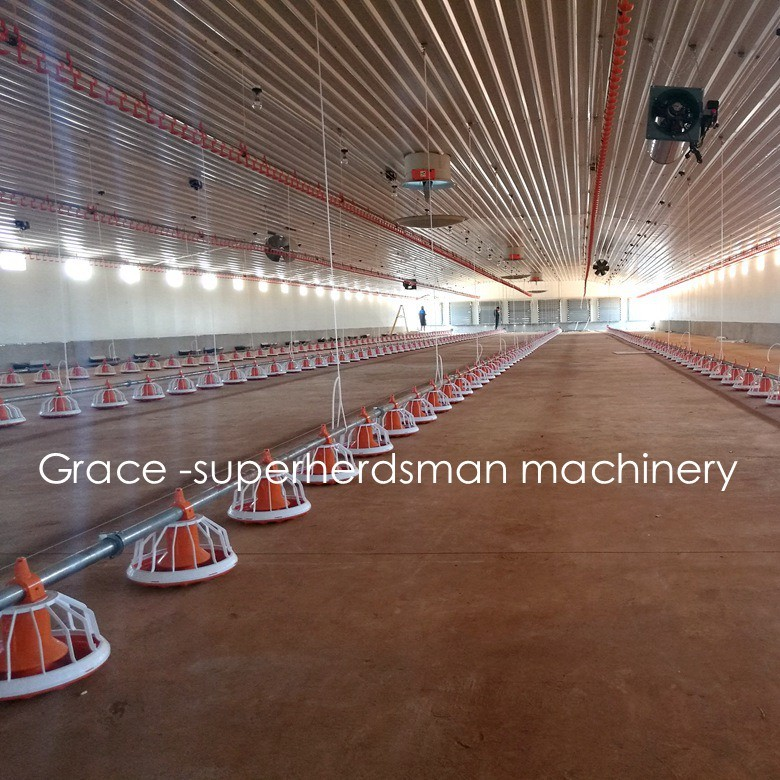 Automatic Broiler Poultry Equipment with Free Design & Prefab Shed Construction